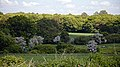 Bush Wood from The Stag, Little Easton, Essex, England 01.jpg