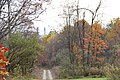 ButterMilk Falls Home of Mr. Rodgers - panoramio (78).jpg