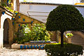 Córdoba (15344324131).jpg