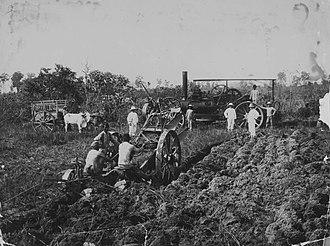Deli Company - Image: COLLECTIE TROPENMUSEUM Bedrijfsmedewerkers van de Deli Maatschappij in het veld bij een stoomploeg en een ossenkar T Mnr 60043456