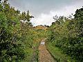 Camí d'accés a Kuelap.jpg