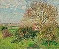 Camille Pissarro - Le grand noyer, matin d'automne, Éragny (Pushkin Museum).jpg