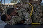 Camp Lemonnier Combatives Tournament 170113-F-QX786-0188.jpg