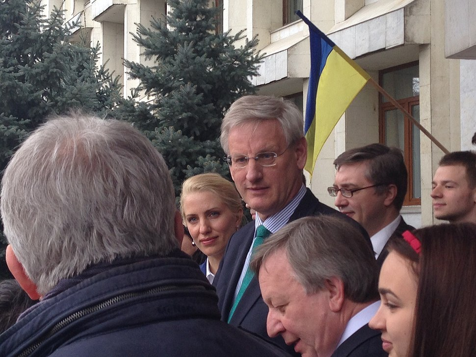 Carl Bildt in IIR 2