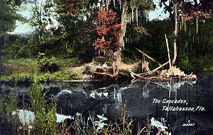 Tallahassee, Florida - A hand-colored photograph of Cascades Park in 1912