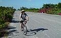 Castaway Cay runway.jpg