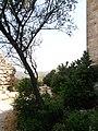 Castle of Aguilar064.JPG