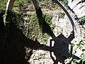 Cava Gran (Agres) - 05.JPG