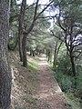 Cavtat, Croatia - panoramio - Aleksandar Topuzović (1).jpg