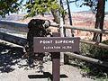 Cedar breaks NM-Point Supreme.JPG