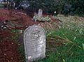 Cemetery, Amador City.jpg