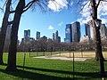 Central Park Jan 07.jpg