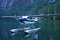 Cessna 180 of Fort Langley Air.jpg