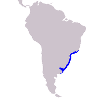 Map showing distribution along the Atlantic coast of southeastern South America