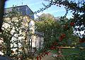 Château Belin.jpg
