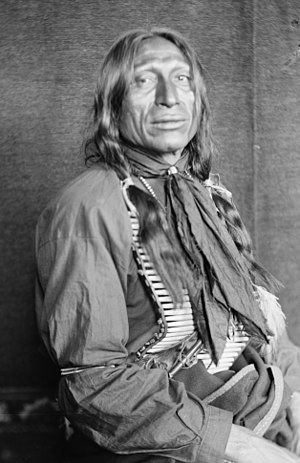 Gertrude Käsebier - Chief Iron Tail, Gertrude Kasebier, 1898, U.S. Library of Congress