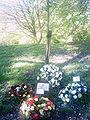 Chorley workers memorial tree.jpg