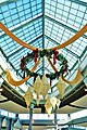 Christmas stuff hanging on the roof - panoramio (1).jpg