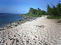 Chulu Beach - Tinian - panoramio - kajikawa (5).jpg