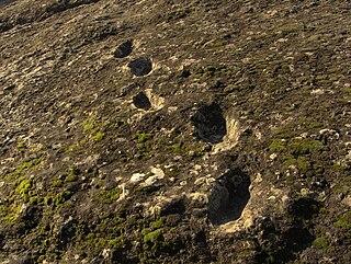 Ciampate del Diavolo locality near the extinct Roccamonfina volcano in northern Campania, Italy