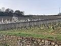 Cimetière - Solutré-Pouilly (FR71) - 2021-03-02 - 2.jpg