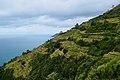Cinque Terre (Italy, October 2020) - 68 (50543587176).jpg