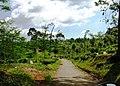 Citalem, Cipongkor, West Bandung Regency, West Java, Indonesia - panoramio (11).jpg