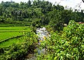 Citalem, Cipongkor, West Bandung Regency, West Java, Indonesia - panoramio (4).jpg
