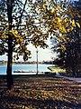 City park - panoramio - koss mel.jpg