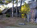 CiudadEncantada Cocodrilo-Elefante alt.jpg