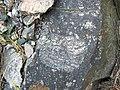 Clast-rich impact pseudotachylite (Sudbury Breccia, Paleoproterozoic, 1.85 Ga; Windy Lake Northwest roadcut, Sudbury Impact Structure, Ontario, Canada) 78 (46969169314).jpg