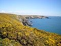 Coastal scenery to the east of Carreg y Barcud - geograph.org.uk - 1255217.jpg