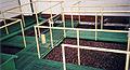 Coffee Processing Seperation vats.jpg