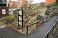 Colonia wall (geograph 2774027).jpg