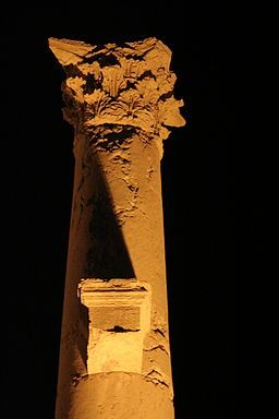 Column in Palmyra at night