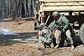 Combat Support Exercise 160303-A-LI523-005.jpg
