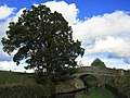 Corbett's Bridge - geograph.org.uk - 599592.jpg