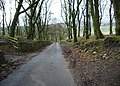 Cornfield Grove, Burnley - geograph.org.uk - 762355.jpg