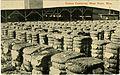 Cotton compress, West Point, Miss. (11669719836).jpg