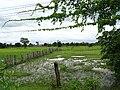 Countryside outside Stung Treng - Cambodia (48429007822).jpg
