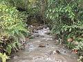 Cuenca que abastece el río de Buga.JPG