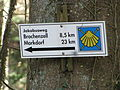 D-BW-Ravensburg - Oberschwäbischer Jakobsweg im Weißenauer Wald 02.JPG