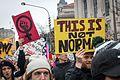 DC Women's March - 31609263354.jpg
