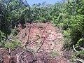 DESLIZAMIENTO DE TIERRA DESPUES DE LA TORMENTA AGATHA, 2010 - panoramio.jpg
