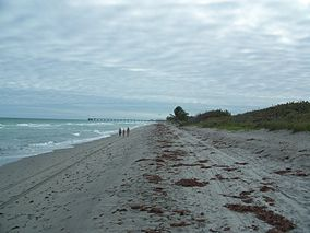 Dania Beach FL John U. Lloyd SP beach south01.jpg