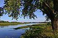 Daugavpils, Latvia - panoramio (167).jpg