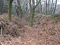 Defensive ditch, Wooston Castle - geograph.org.uk - 1116654.jpg