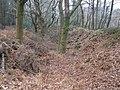 Defensive ditch, Wooston Castle - geograph.org.uk - 1116654.jpg