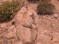 Detalle Gorra De Piedra - panoramio.jpg