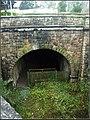 Devonport Tunnel (474894150).jpg